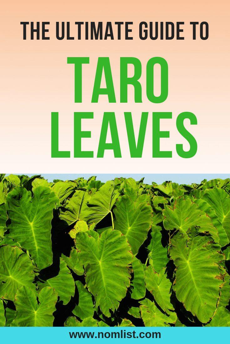 Ultimate Guide to Taro Dalo Leaves