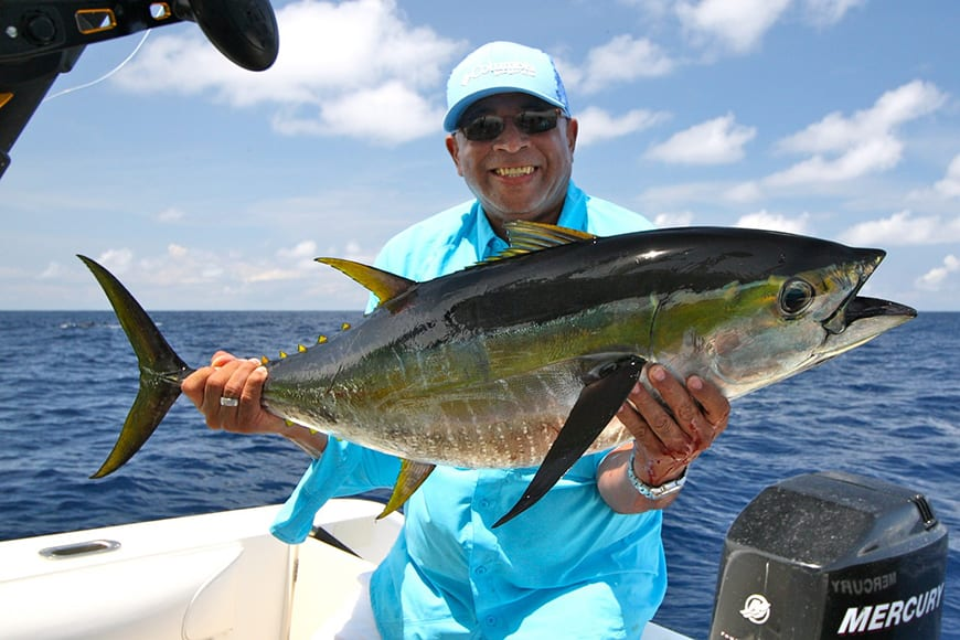 Fijian Fish - Yellowfin Tuna