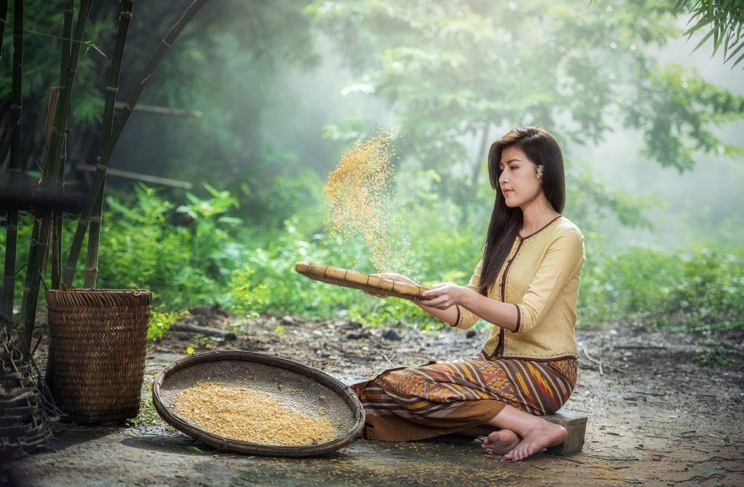 Best 6 Culinary Tours in Vietnam