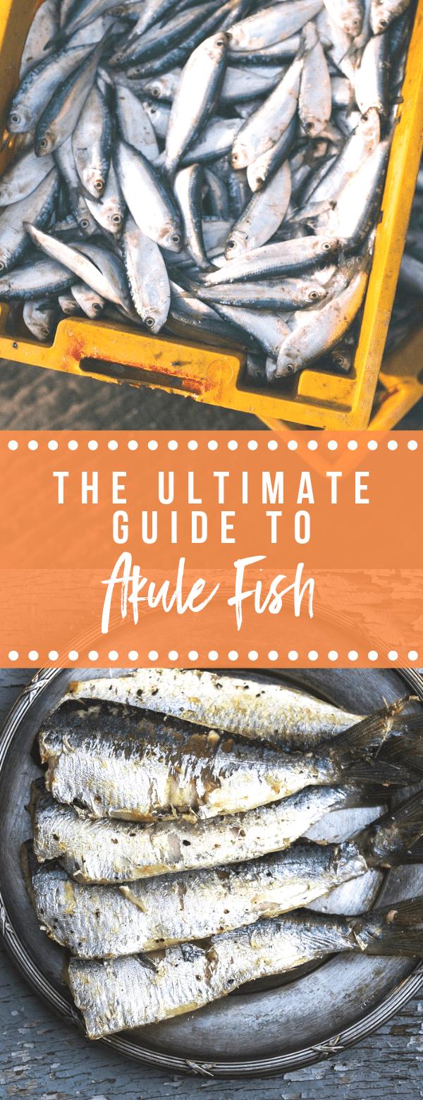 Ultimate Guide to Akule Fish - Pinterest