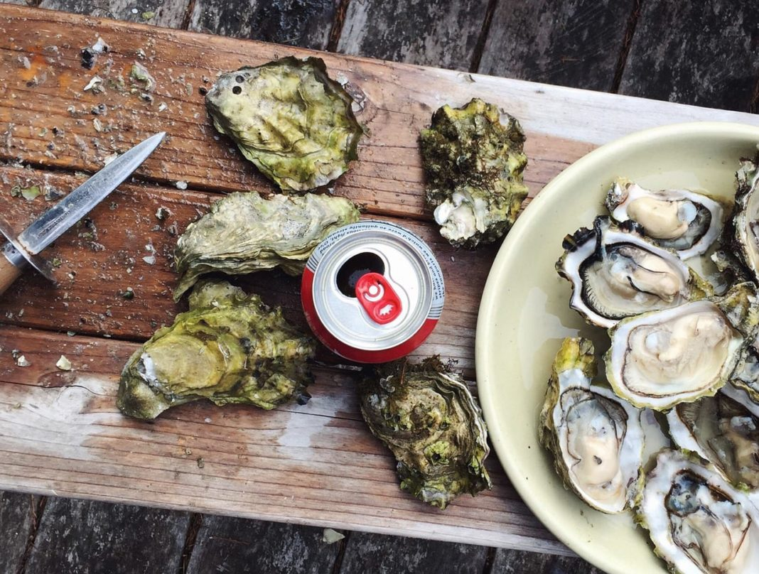 Best Oyster Tools
