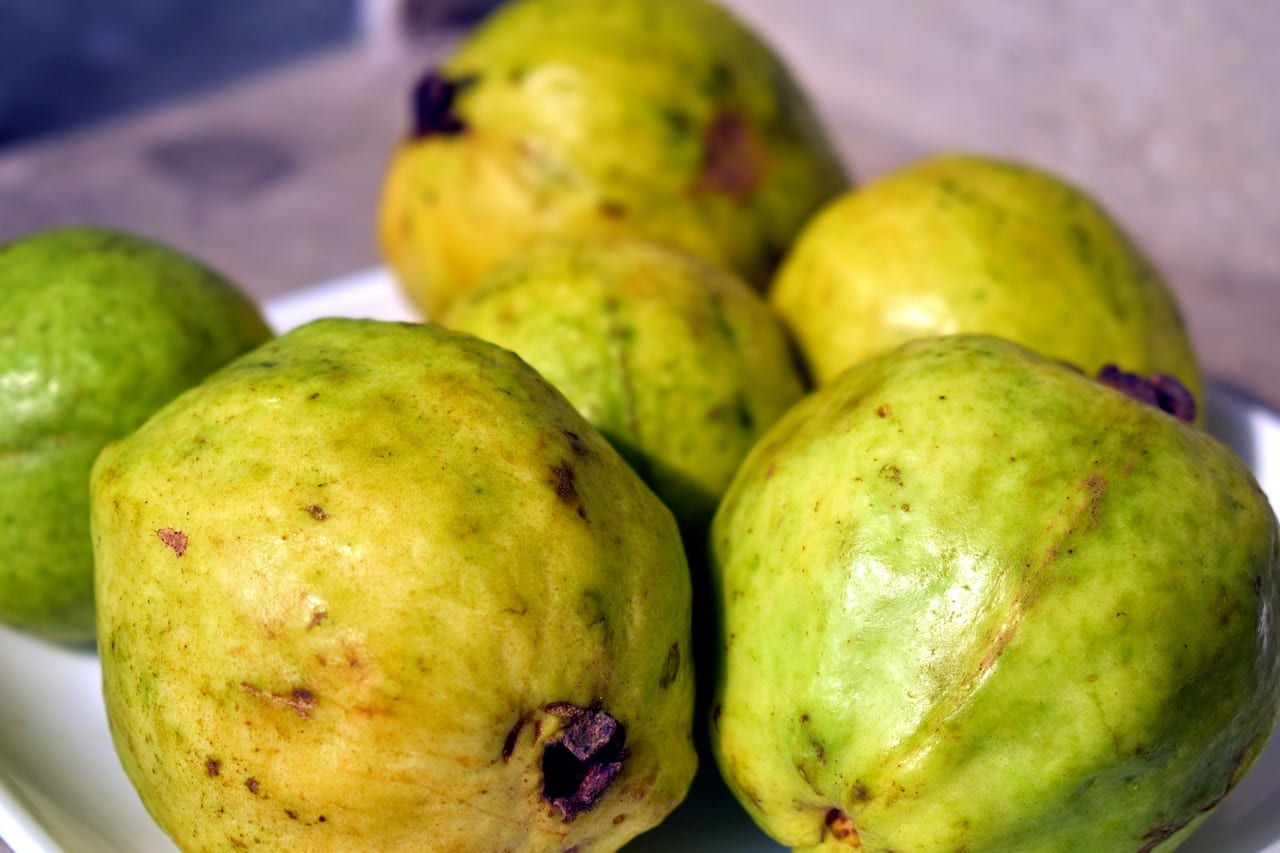 Fruits in Ghana - Guava