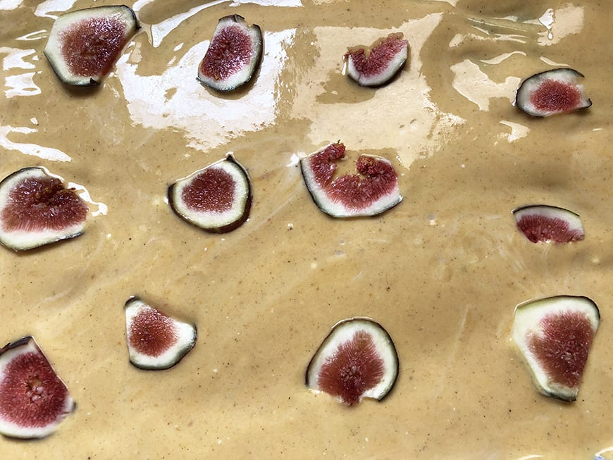Frozen Pumpkin Spice Yogurt Bark -Figs
